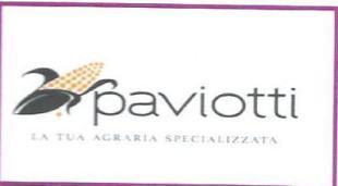 paviotti